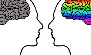 Image of two brains: one gray and one in color.